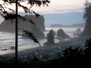 Ruby-Beach-Washington-State